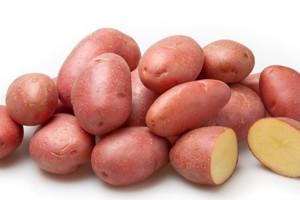 Семенной картофель Розара