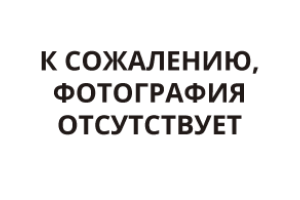 Жимолость Камчадалка (Черенок)